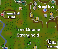 Map of the gnomeball course