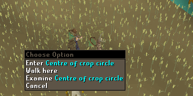 The center of a crop circle