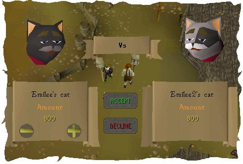 Cat versus cat!