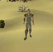 Snake skin armor