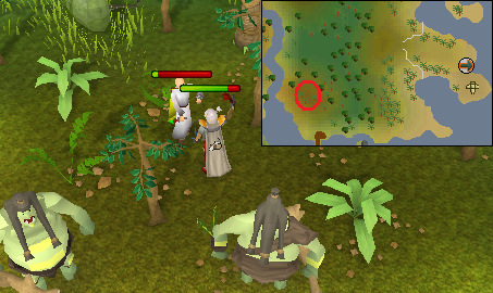 Distraction And Diversion Treasure Trails Sals Realm Of Runescape