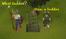 This ladder appeared out of nowhere!