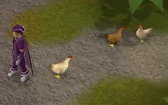 Chicken respawns