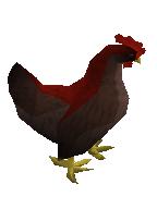 Oomlie bird