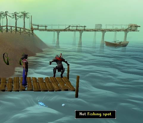 Lots of fish swim around this popular dock