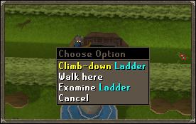 Climb down ladder