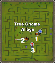 Map of the Tree Gnome Village