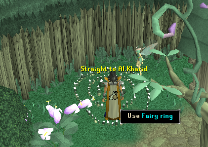 A Fairy Ring
