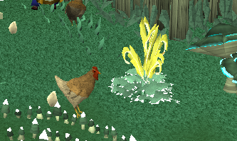Morph into a chicken!