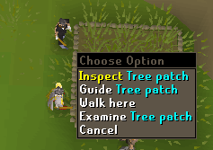 Inspect tree patch