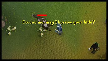Kill a cow