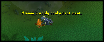 Cooking rat meat