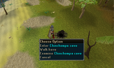 Big Chinchompa - The Chinchompa cave entrance