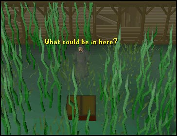 Entrance to the canifis dungeon