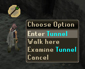 'Enter' Tunnel
