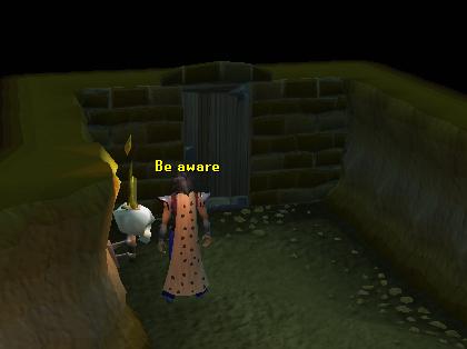 The magic door leading to the wildy!