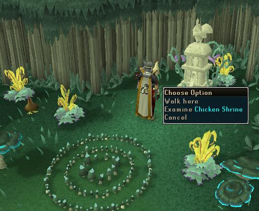 Examine Chicken Shrine