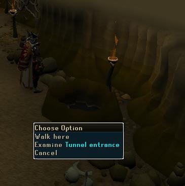 Examine tunnel entrance