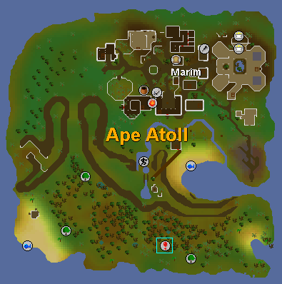The location of the dungeon entrance on ape atoll island