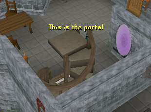 The portal in the wizard's tower takes you to the guild