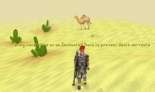 A desert wolf!