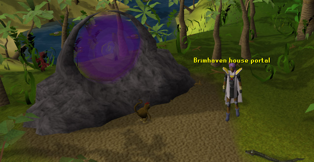 The portal, useful in getting to your POH