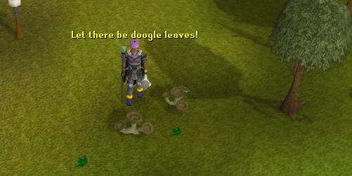 Lots of doogle leaves respawn here!