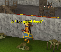 A guard is stationed here