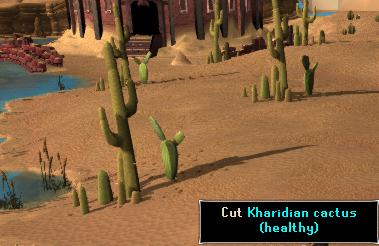 Kharidian Cactus