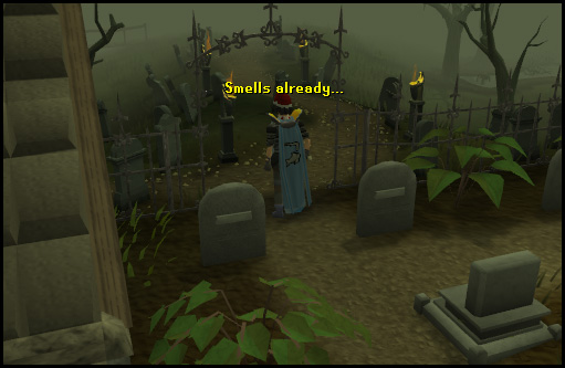 Entrance to Lumbridge Swamp, from the graveyard