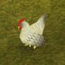 Chicken (level 1)
