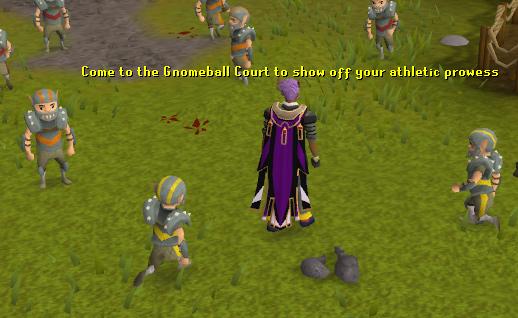 Gnomeball course