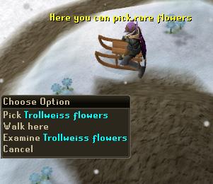 Pick Rare Flowers (trollweiss)