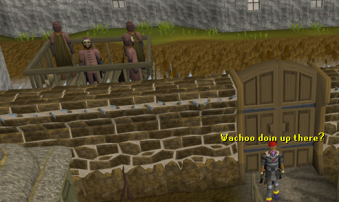 The gates leading in and out of west ardougne