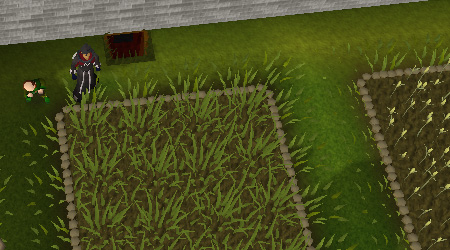 Farming patches