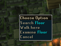 Search the floor