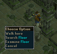 Search the floor for traps