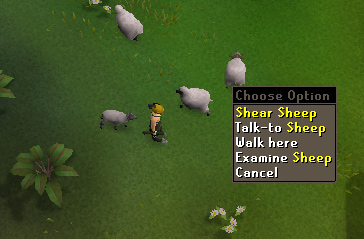 "Choose the ""shear sheep"" option from the right click menu"