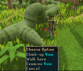Climb up vine