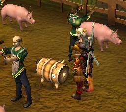 A pig decoy