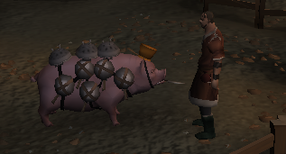 Your very own trained pig