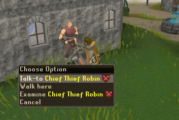 Talk to Chief Thief Robin