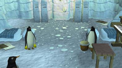 A penguin concert!