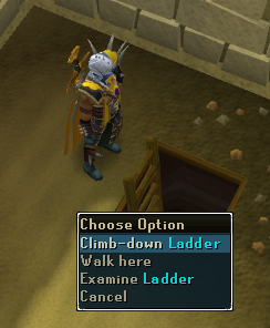 Contact! - 'Climb down' ladder