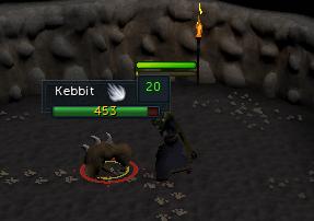 A kebbit!