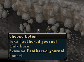 Take the feathered journal
