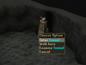 Enter the tunnel