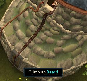 Climb up beard