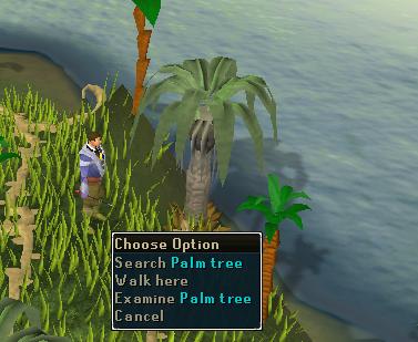 Search palm tree