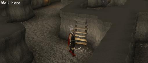 Climb up troll ladder